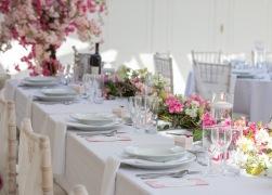 Hayne House Wedding-19